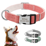 Custom Fashion Nylon Personalized Dog Collar-Collars, Harnesses & Leashes-petsoftcare-petsoftcare