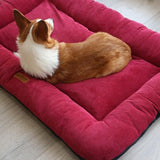 Soft Dog Bed Mattress Mat-Dog beds-petsoftcare-RED-70X55CM-China-petsoftcare