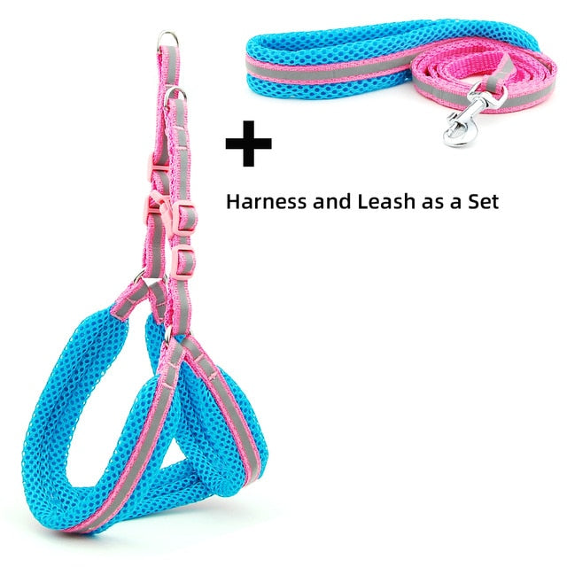 Dog Cat Harness Vest Reflective Breathable Mesh-Collars, Harnesses & Leashes-petsoftcare-Pink Sets-M-petsoftcare
