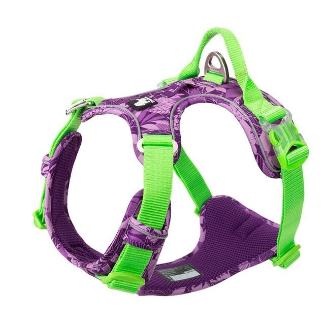 No Pull Dog Harness Vest Nylon Reflective-Collars, Harnesses & Leashes-petsoftcare-Purple dog harness-L 69-81cm chest-petsoftcare