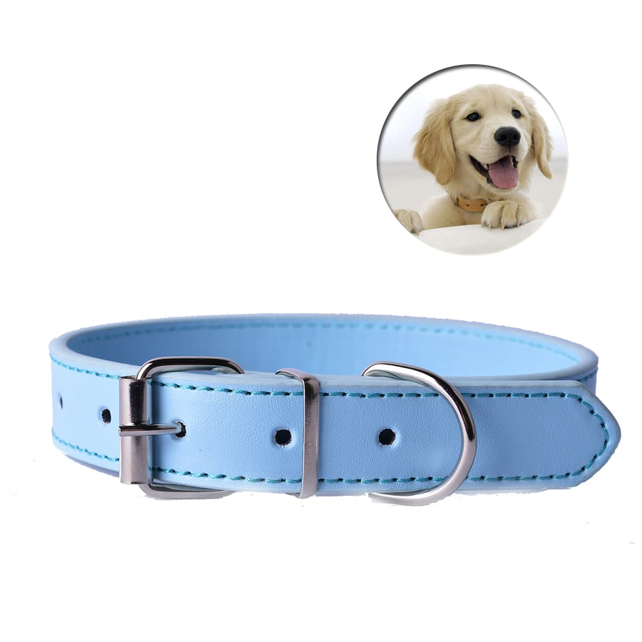 Fashion 8Colors Pu Leather Pet Dog Collar-Collars, Harnesses & Leashes-petsoftcare-petsoftcare
