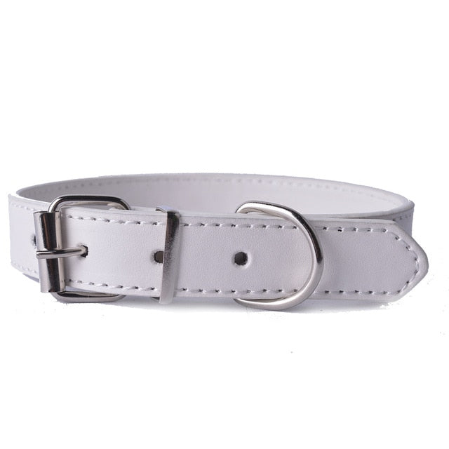 Fashion 8Colors Pu Leather Pet Dog Collar-Collars, Harnesses & Leashes-petsoftcare-White-XS-petsoftcare