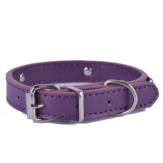 Fashion 8Colors Pu Leather Pet Dog Collar-Collars, Harnesses & Leashes-petsoftcare-Purple-XS-petsoftcare