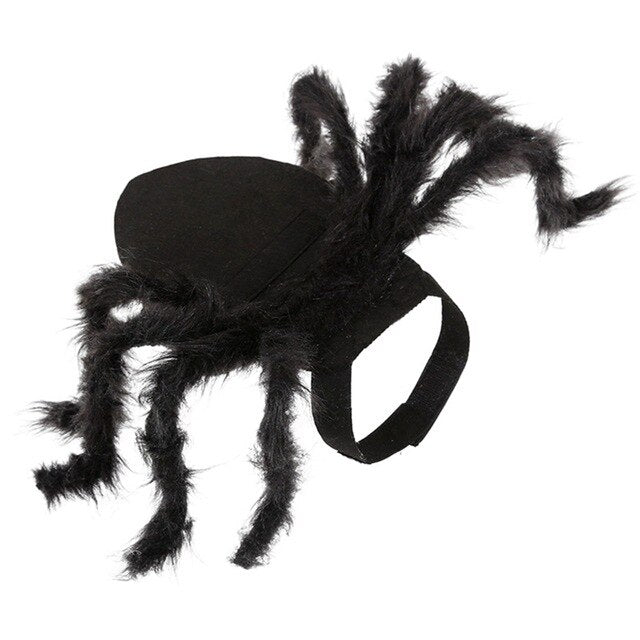 Halloween Pet Spider Clothes Simulation-Halloween shop-petsoftcare-Spider-L-petsoftcare
