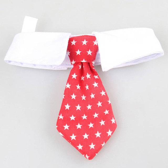 Costume Clip Tie for Cats and Dogs-Cat collars-petsoftcare-V Tie Red Stars-S-petsoftcare