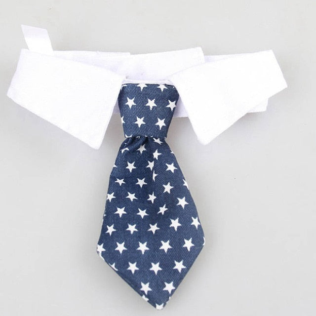 Costume Clip Tie for Cats and Dogs-Cat collars-petsoftcare-V Tie Blue Stars-S-petsoftcare