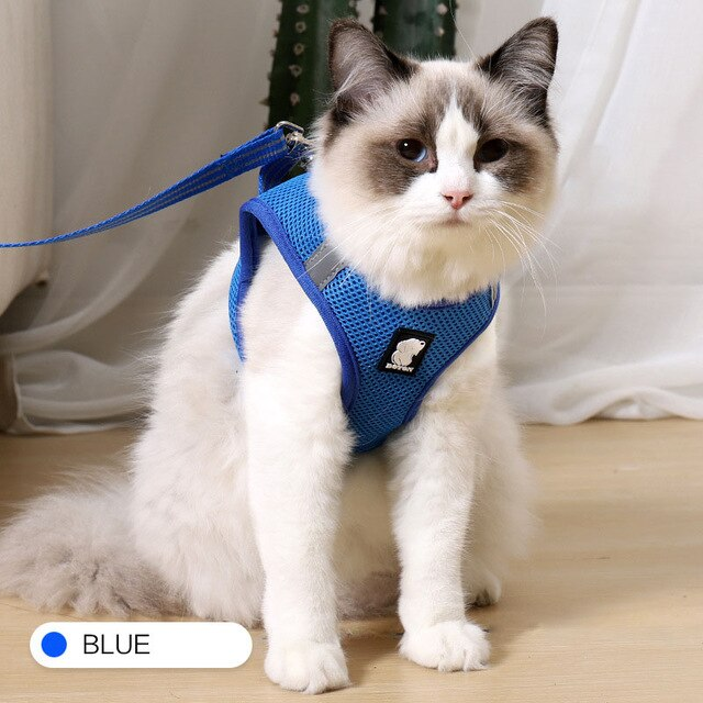 Cat Harness and Leash Set Breathable Rope Vest-Cat collars-petsoftcare-Blue-L-petsoftcare