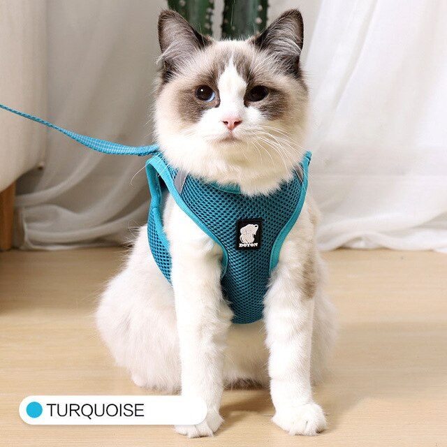 Cat Harness and Leash Set Breathable Rope Vest-Cat collars-petsoftcare-Turquoise-L-petsoftcare