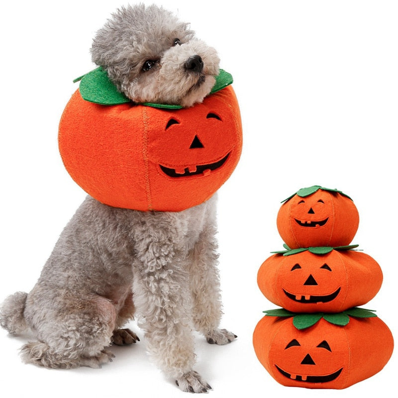 Pet Collars Halloween Pumpkin Cute Cosplay-Halloween shop-petsoftcare-petsoftcare