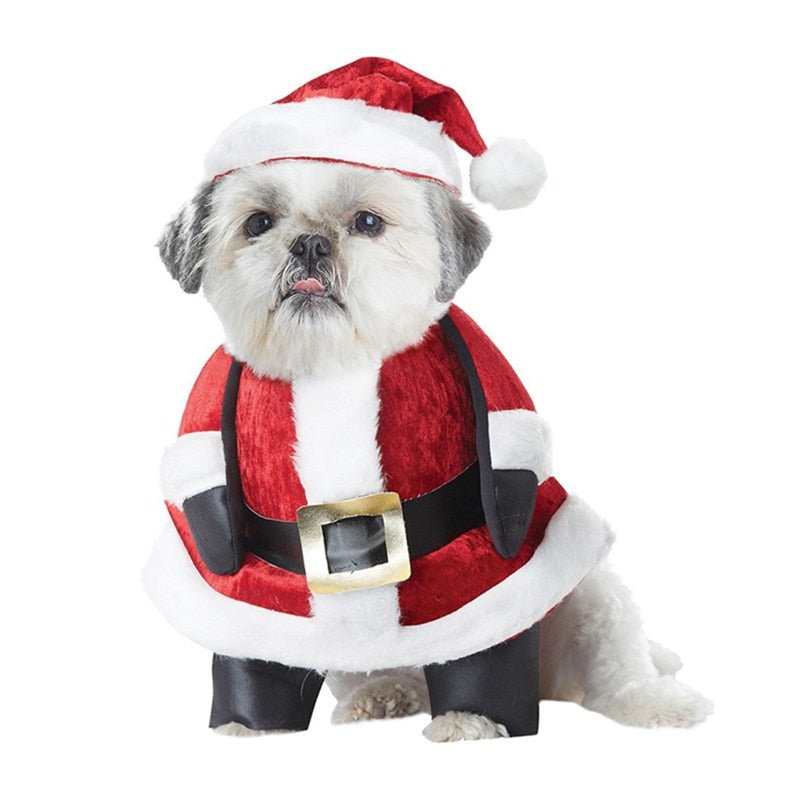 Dog Cosplay Costume For Halloween Christmas-Halloween shop-petsoftcare-C-XL-petsoftcare