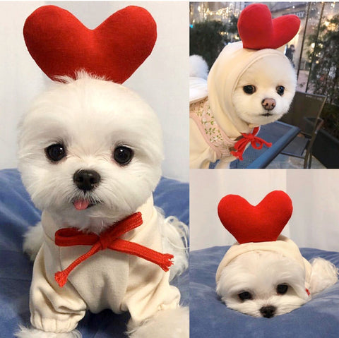 2020 New Winter Warm Cute Dog Clothes Christmas-Halloween shop-petsoftcare-petsoftcare