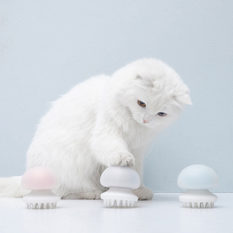 Cat Massager Comb-Cat toys-petsoftcare-petsoftcare