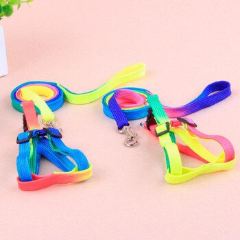 Rainbow adjustment P Chain Leash For Kitten Cat Supplies-Cat collars-petsoftcare-petsoftcare