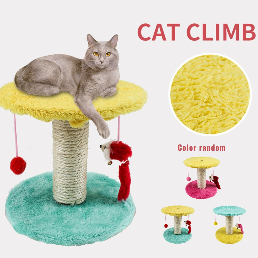 Cat Toy Cat Climbing Frame Scratching Board-Cat Trees & Condons-petsoftcare-petsoftcare