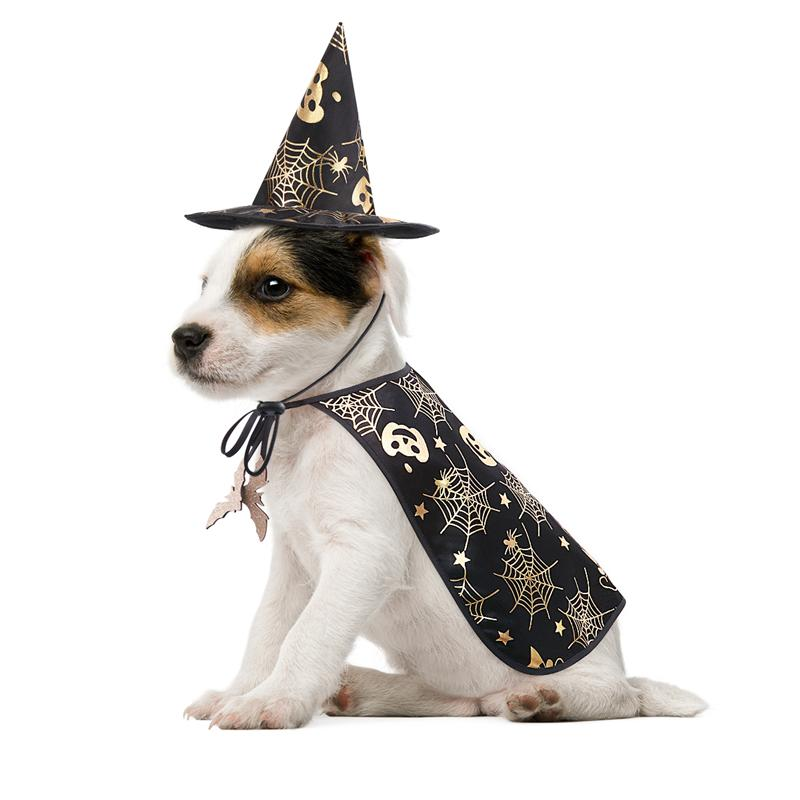 Halloween Costume Pet Dog Halloween Costume Cape And Wizard Hat-Halloween shop-petsoftcare-petsoftcare