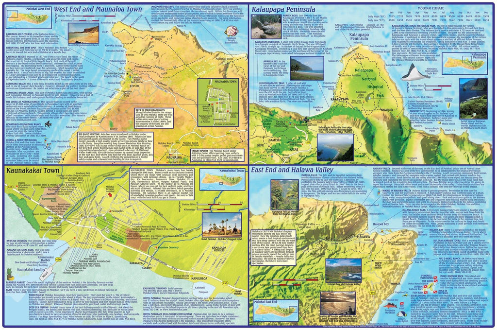 Molokai Adventure Guide Map Laminated Poster - Frankos Maps