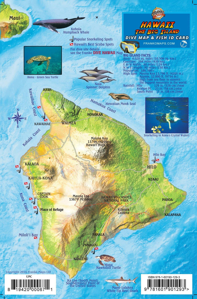 "Hawaii ""Big Island"" Fish Card - Frankos Maps"