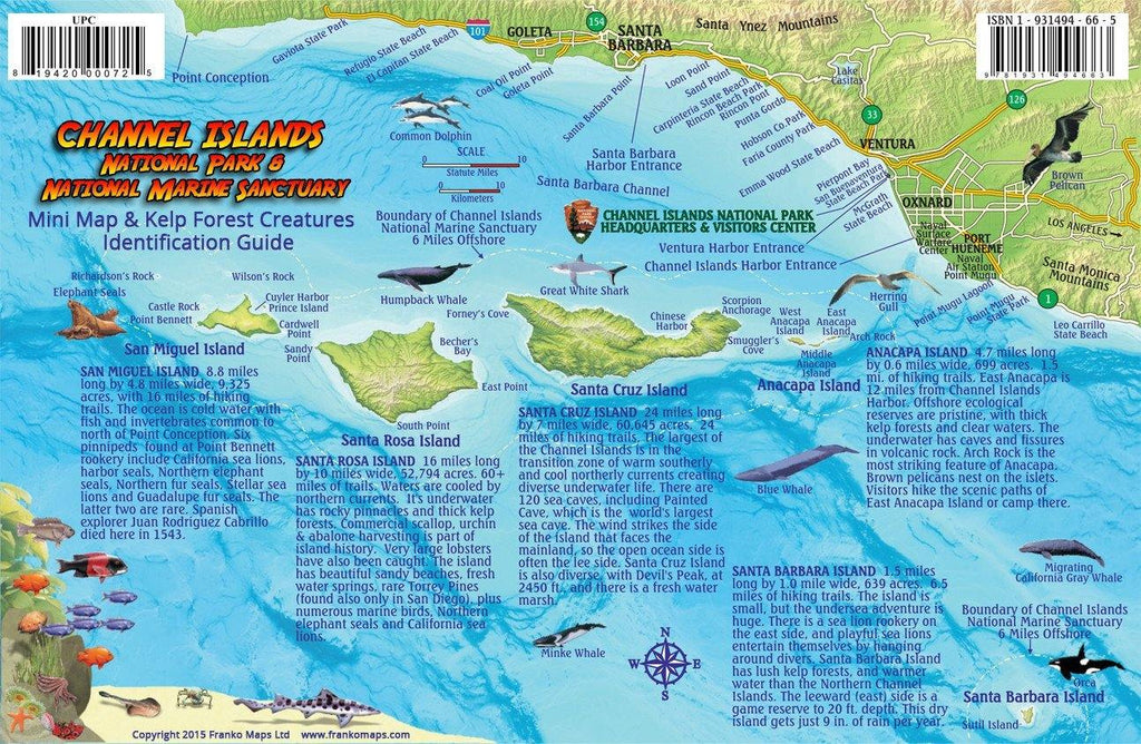 Channel Islands National Park Fish Card - Frankos Maps