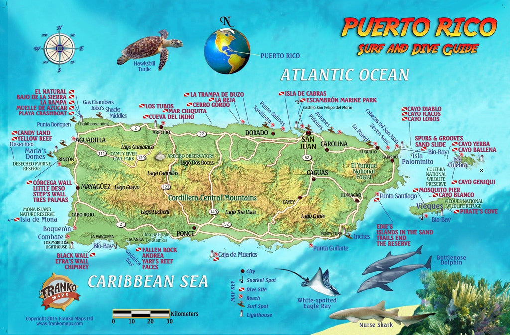 Puerto Rico Fish Card - Frankos Maps