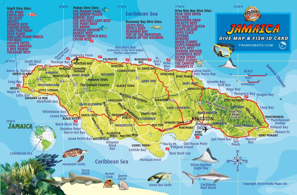 Jamaica Fish Card - Frankos Maps