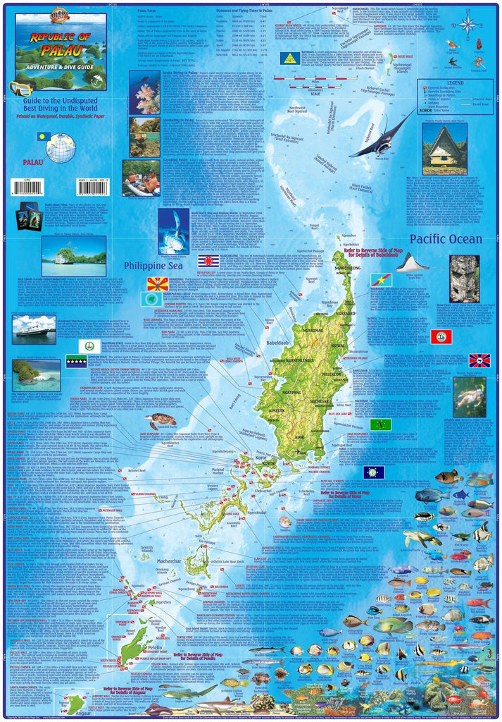 Palau Adventure & Dive Guide Map Laminated Poster - Frankos Maps