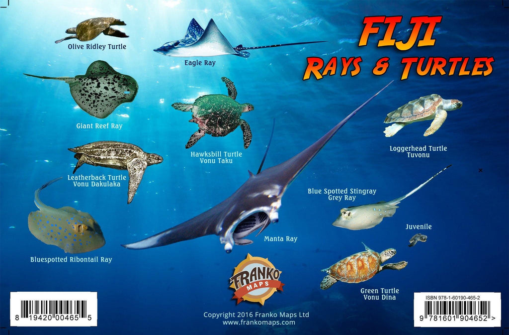 Fiji Sharks, Rays & Turtles Card - Frankos Maps