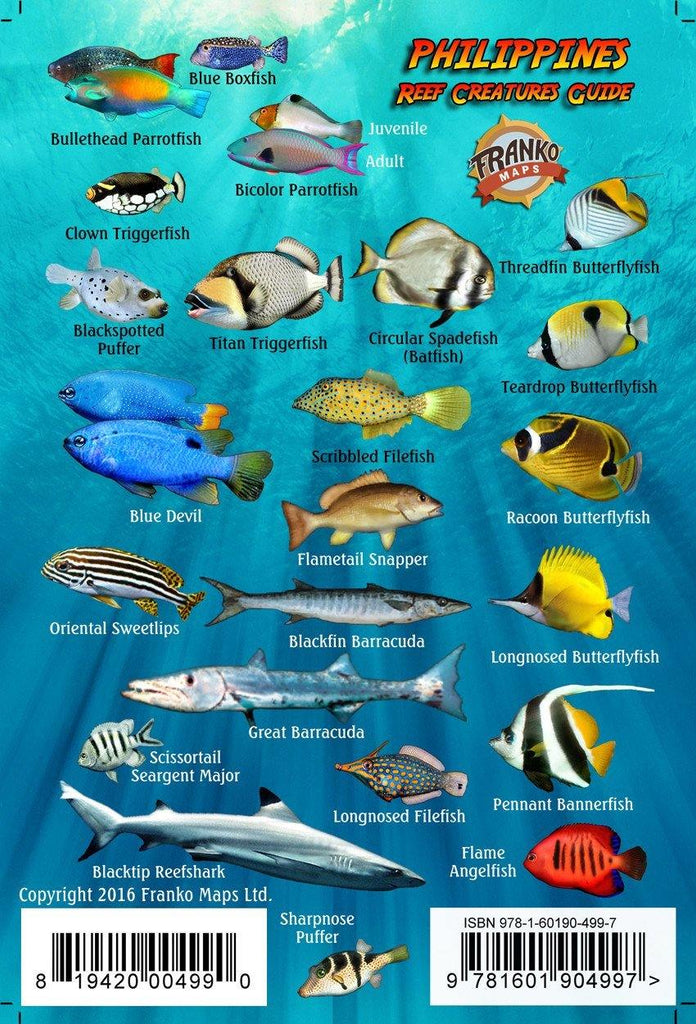 Philippines Mini Fish Card - Frankos Maps