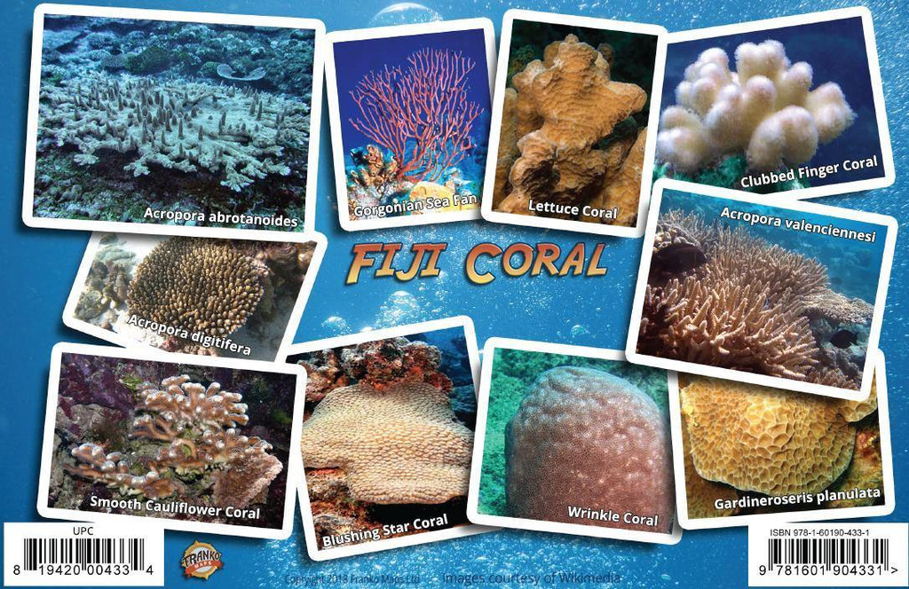 Fiji Coral Identification Guide Card - Frankos Maps