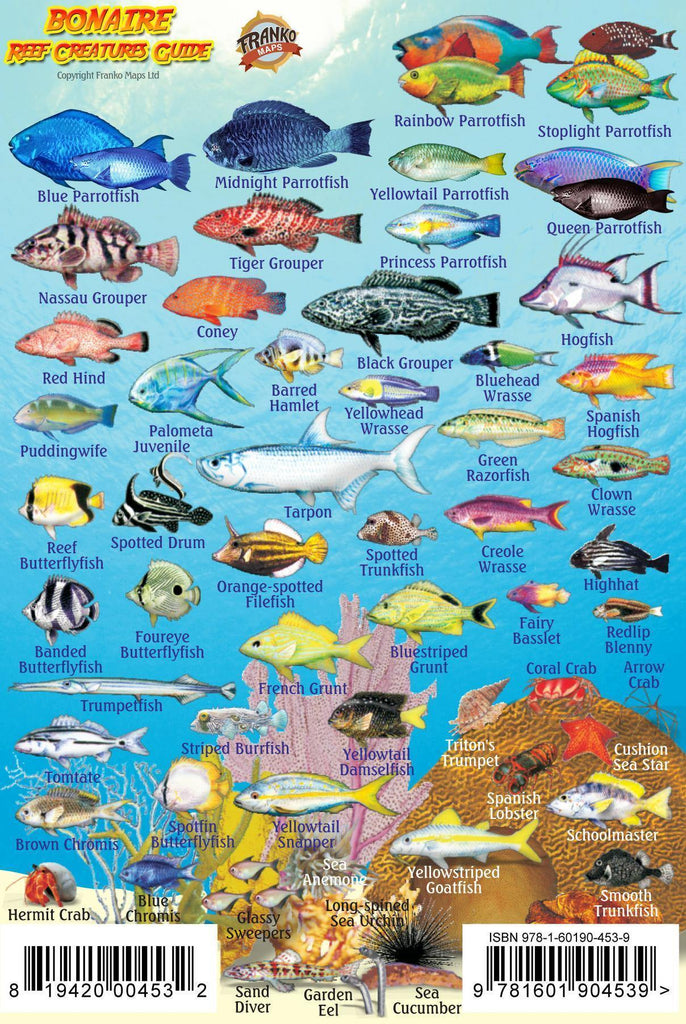 Bonaire Mini Fish Card - Frankos Maps
