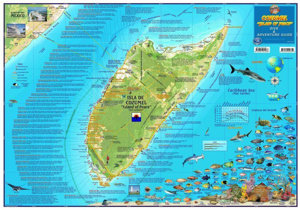 Cozumel Mexico Dive & Adventure Guide Map - Frankos Maps