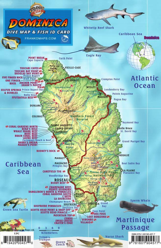 Dominica Fish Card - Frankos Maps