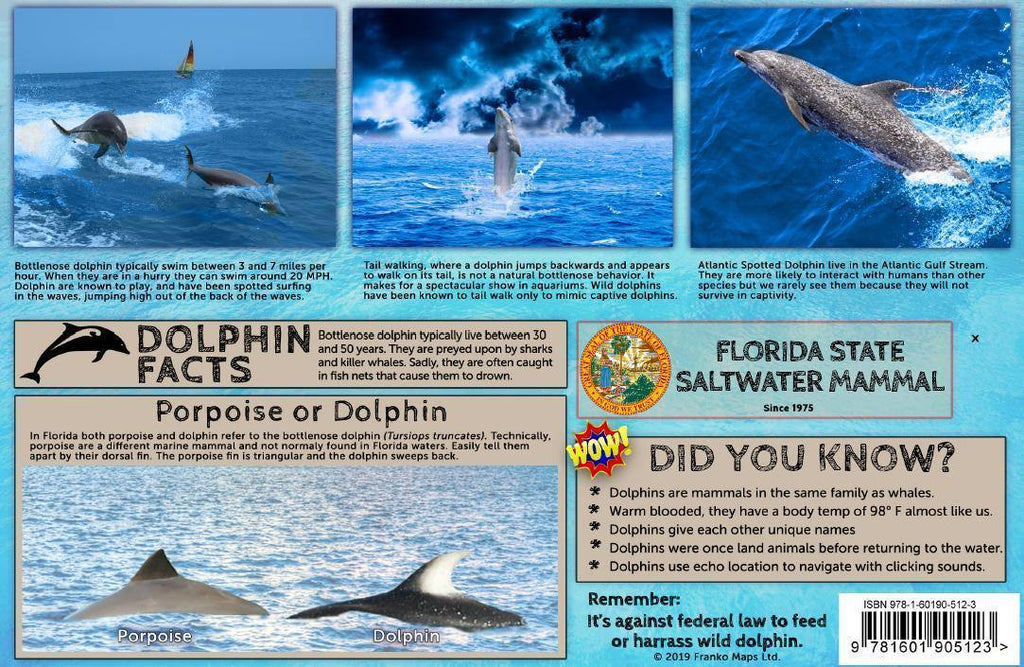 Florida Dolphins Guide Card - Frankos Maps