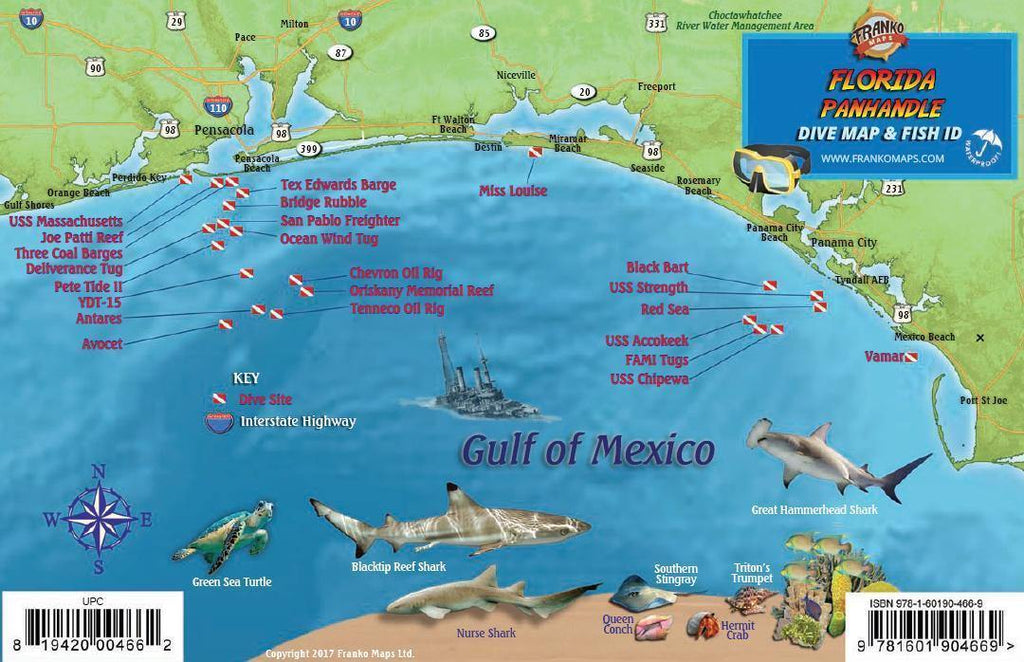 Florida Panhandle Fish Card - Frankos Maps