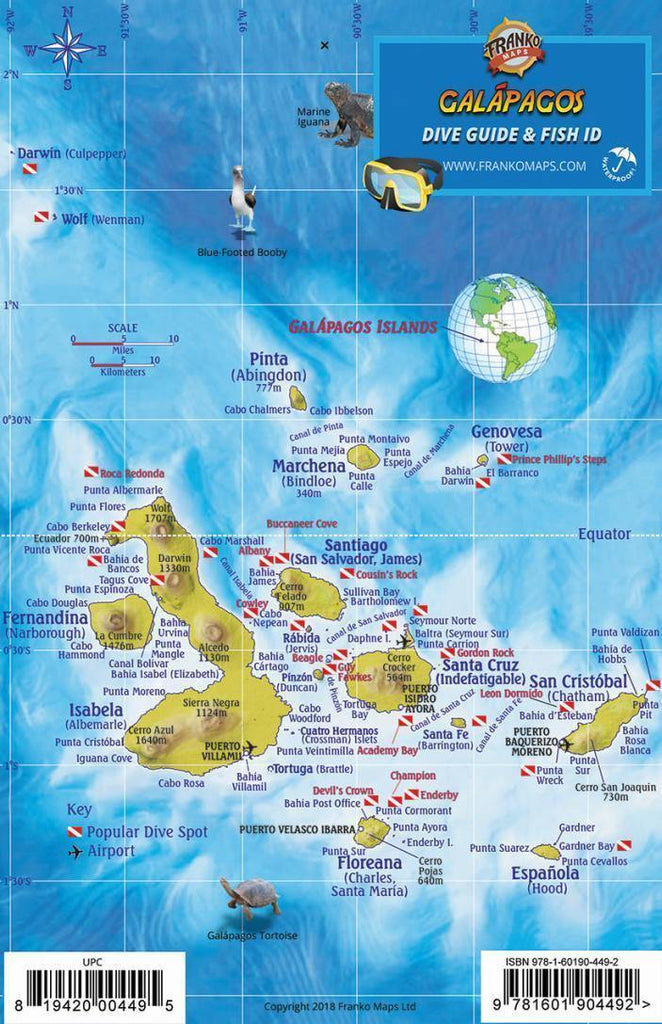Galapagos Islands Fish Card - Frankos Maps