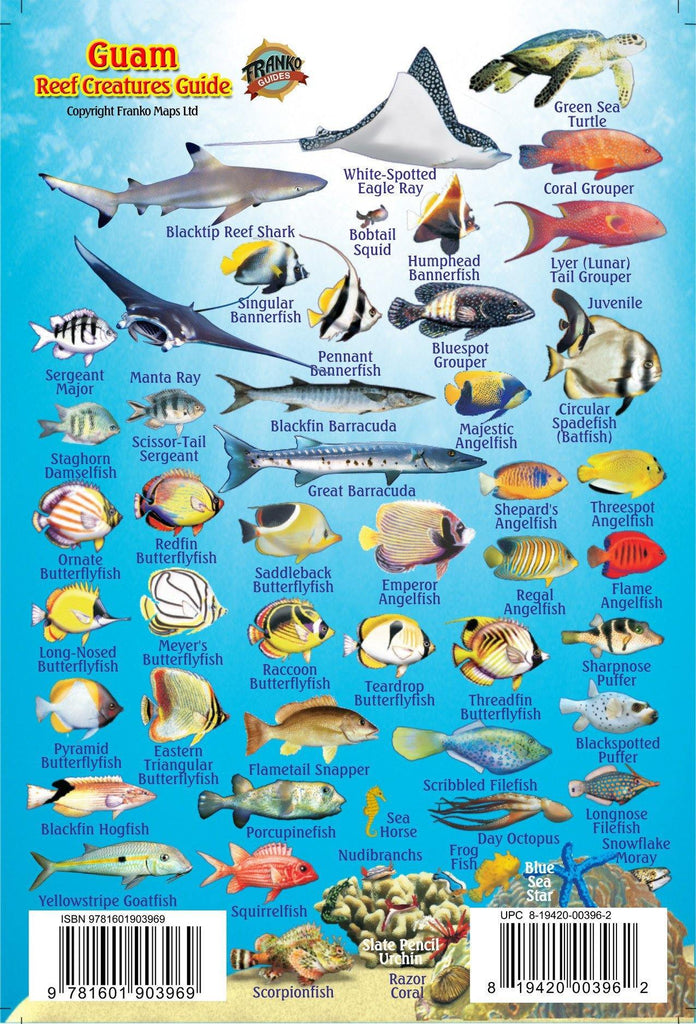 Guam Mini Fish Card - Frankos Maps