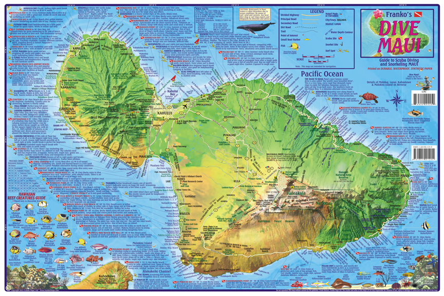 Maui Dive Map Laminated Poster - Frankos Maps