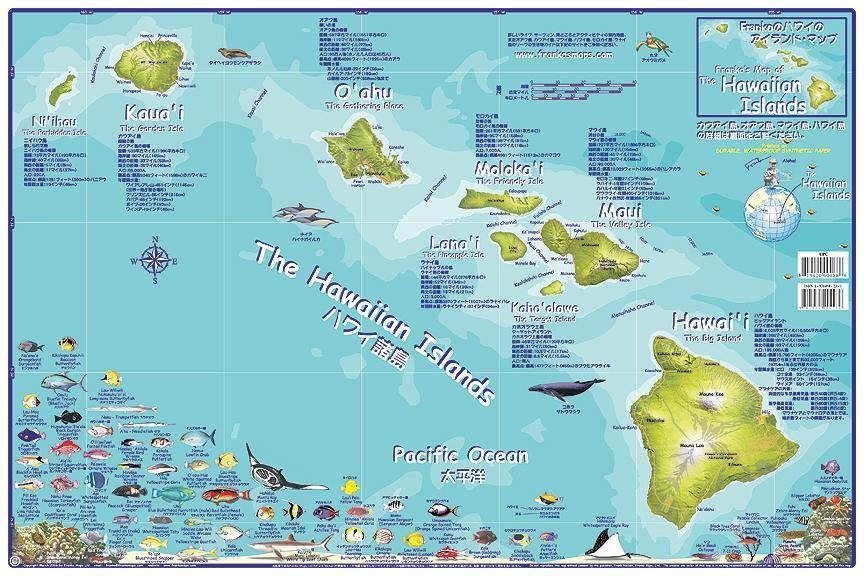 Hawaiian Islands Adventure Guide Map - Japanese Edition - Frankos Maps
