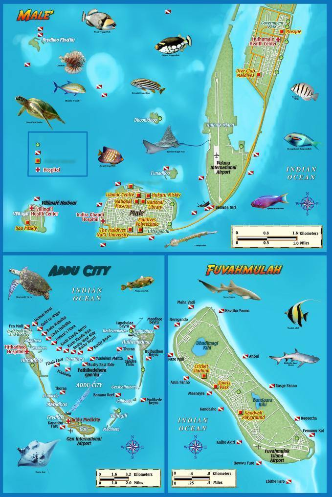 Maldives Map & Dive Guide - Frankos Maps