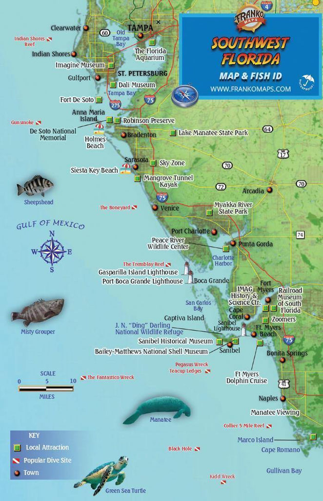 Southwest Florida Fish Card - Frankos Maps