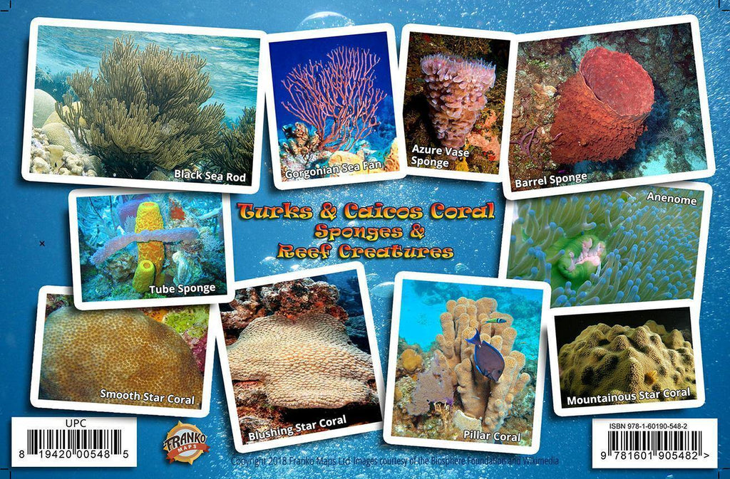 Turks & Caicos Coral Guide Card - Frankos Maps