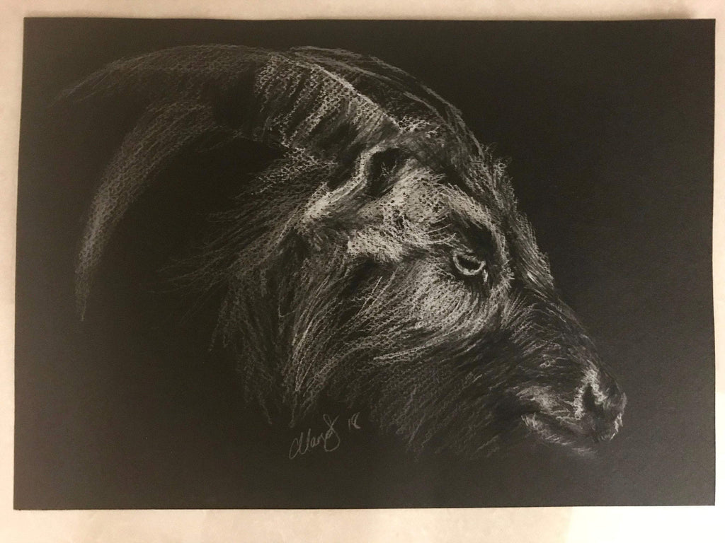 THE WITCH - Black Phillip - ChantalLauraHandley