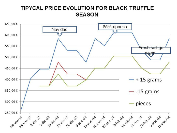 Evolution of truffle prices in a conventional Tuber Melanosporum black truffle campaign