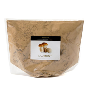 Porcini powder in sack of 1kg