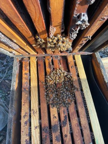 When to give up on a struggling Hive