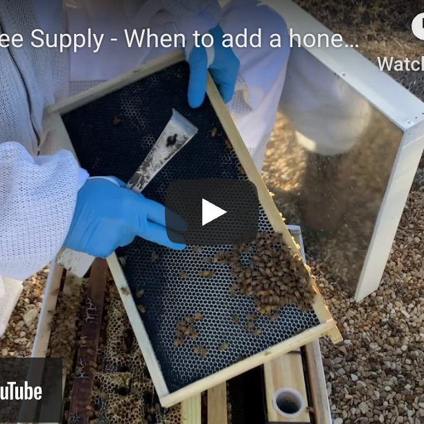 When to add a honey super- Video