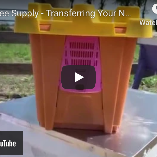 How To Install a Nuc Into Your Hive Box