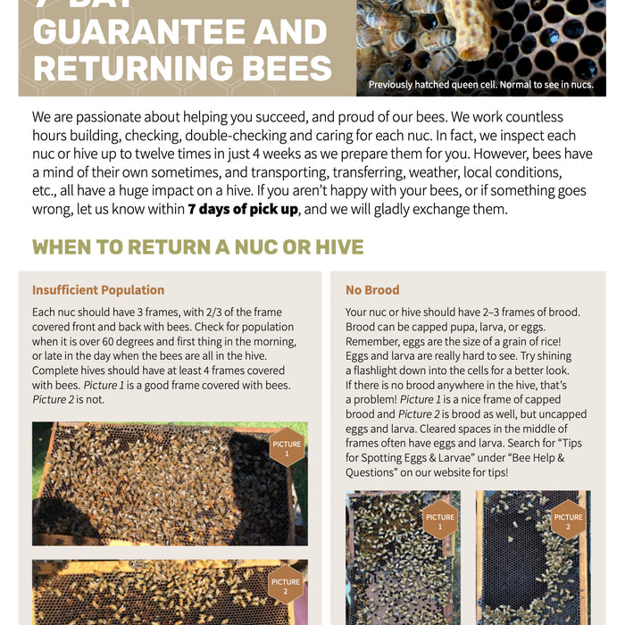 7 Day Guarantee & Returning Bees