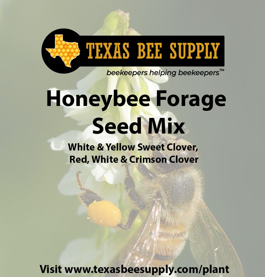 1 lb. Honeybee Forage Seed Mix