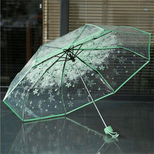Load image into Gallery viewer, Transparent Clear Umbrella Cherry Blossom Mushroom Apollo Sakura 3 Fold Umbrella Sakura 3 Fold Umbrella women girl's Umbrella*