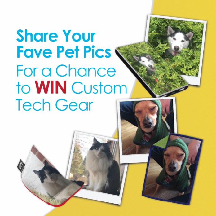 Enter the #PutYourPetOnIt Photo Contest!